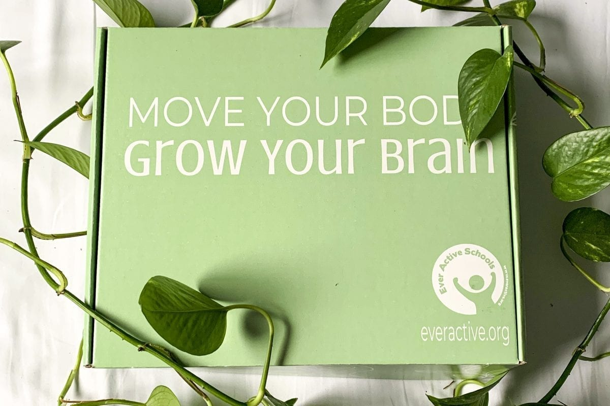 The EAS Box: Move Your Body, Grow Your Brain