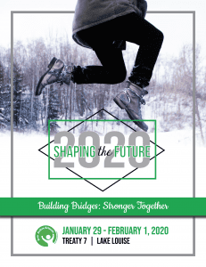 STF2020 Program Cover